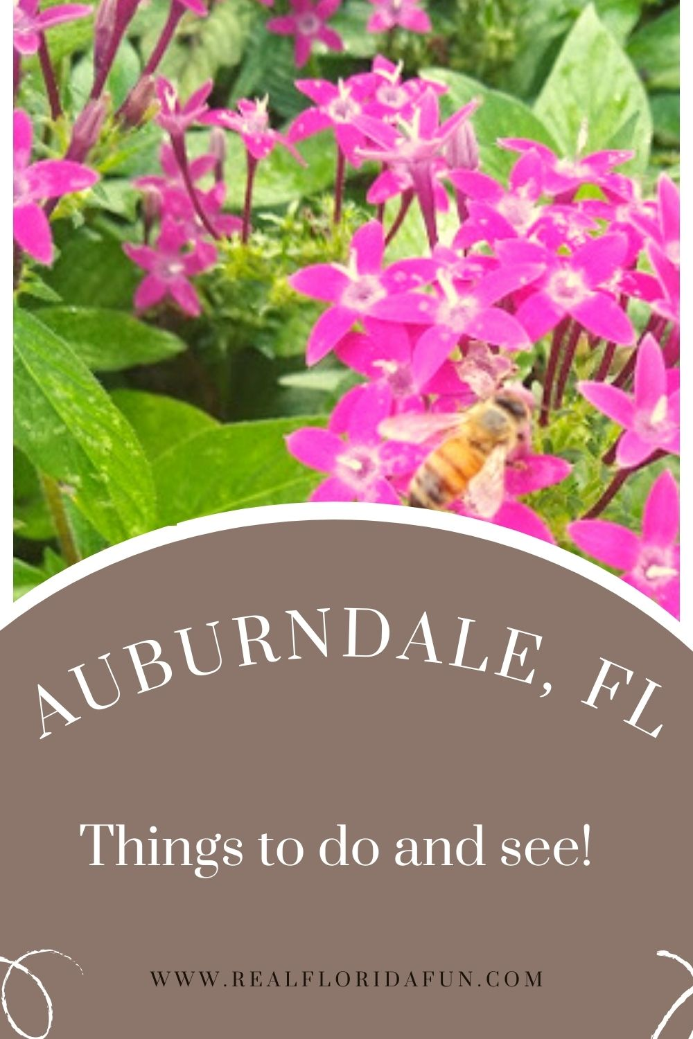 Visiting Auburndale, Florida? This quaint town just 30 minutes from Orlando offers a variety of things to do and see!